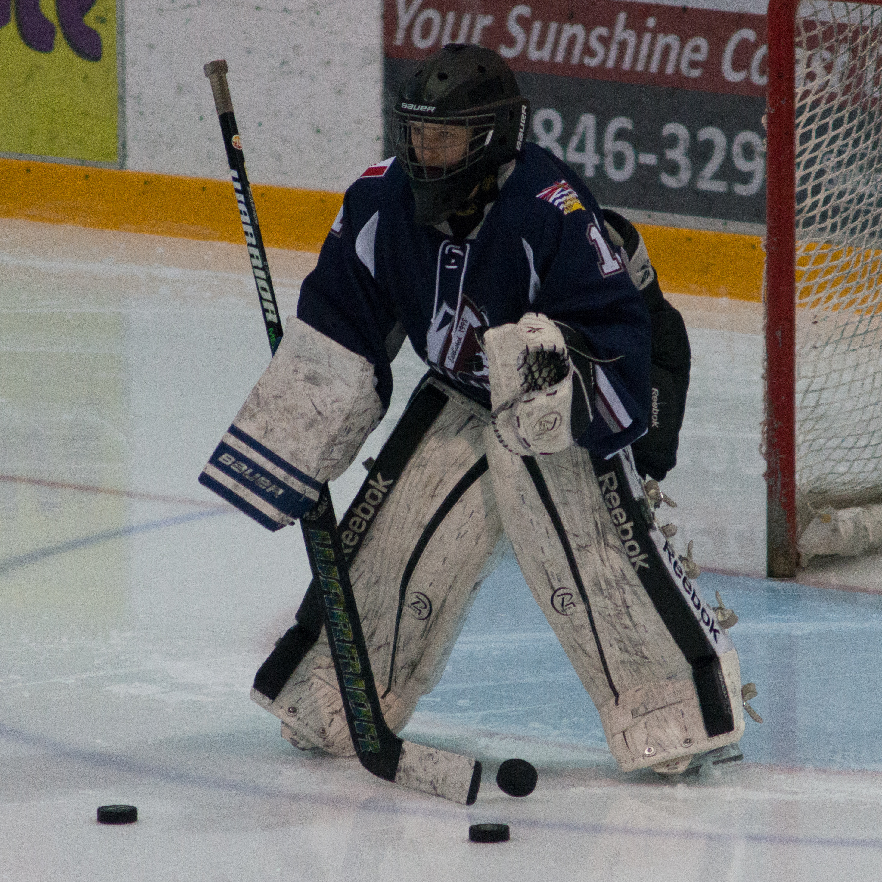 Sheer Hockey Training Design Hosting Registration